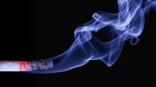 Should I buy a house that smells like smoke?